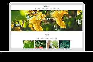 蔬菜水果网站模板
