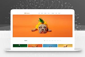 宠物领养网站模板